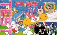 Tiny Toon Adventures : Wild & Wacky Sports